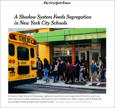 shadow system NYT